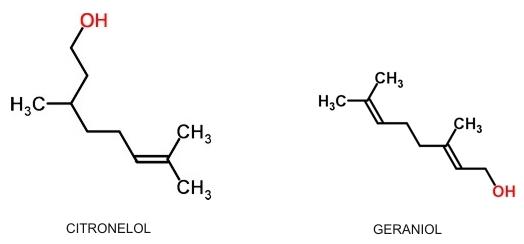GeraniolCitronelol