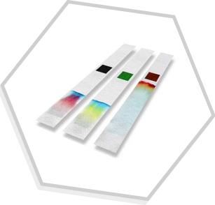 CromatografiaCCDMenuOE