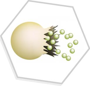 Microencapsulação de Óleos Essenciais