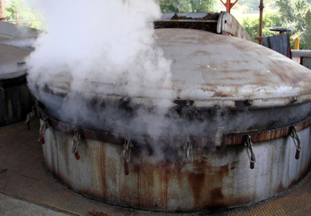 Destilaria de óleo essencial de eucalipto citriodora no interior de São Paulo.