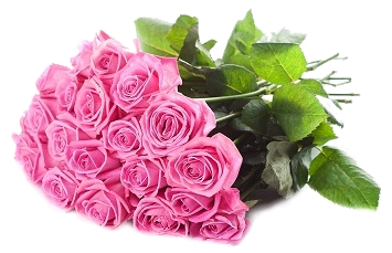 Óleo Essencial de Rosas