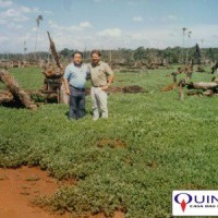 Plantação de Mentha arvensis em Hernandarias/Paraguai na década de 80. À esquerda, Sr Ricardo Kazumi Nimoto, responsável por uma das maiores áreas de cultivo de Mentha arvensis do Paraguai nas décadas de 80/90. À direita, Sr José Azambuja, da QUINARÍ.