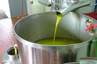 Prensagem a frio; extração de óleo vegetal. (oliva).