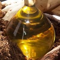 Óleo essencial de pau rosa (rosewood) rico em linalol.