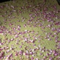 Extração de óleo essencial de rosas por enfleurage