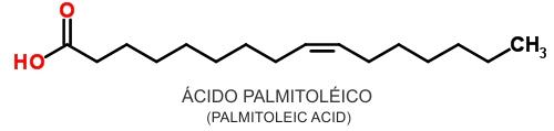 """Óleo de Macadâmia – Fonte de Lipocina, o """"Hormônio"""" do Emagrecimento"""