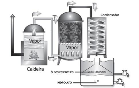 hidrolatooe01